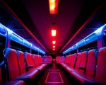 Willbee – Party Bus